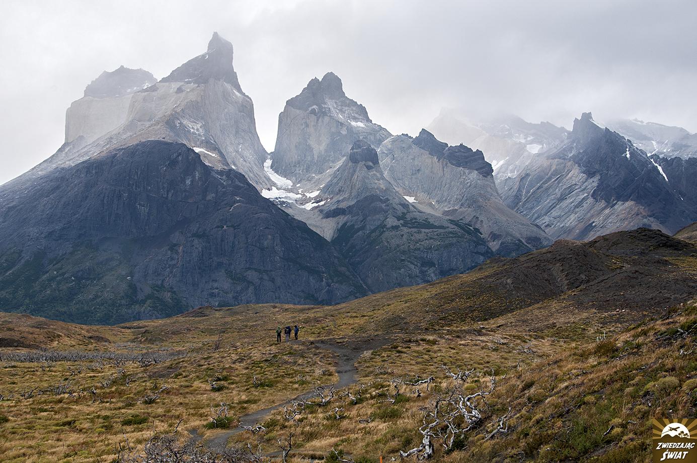 słynne Rogi w Torres del Paine