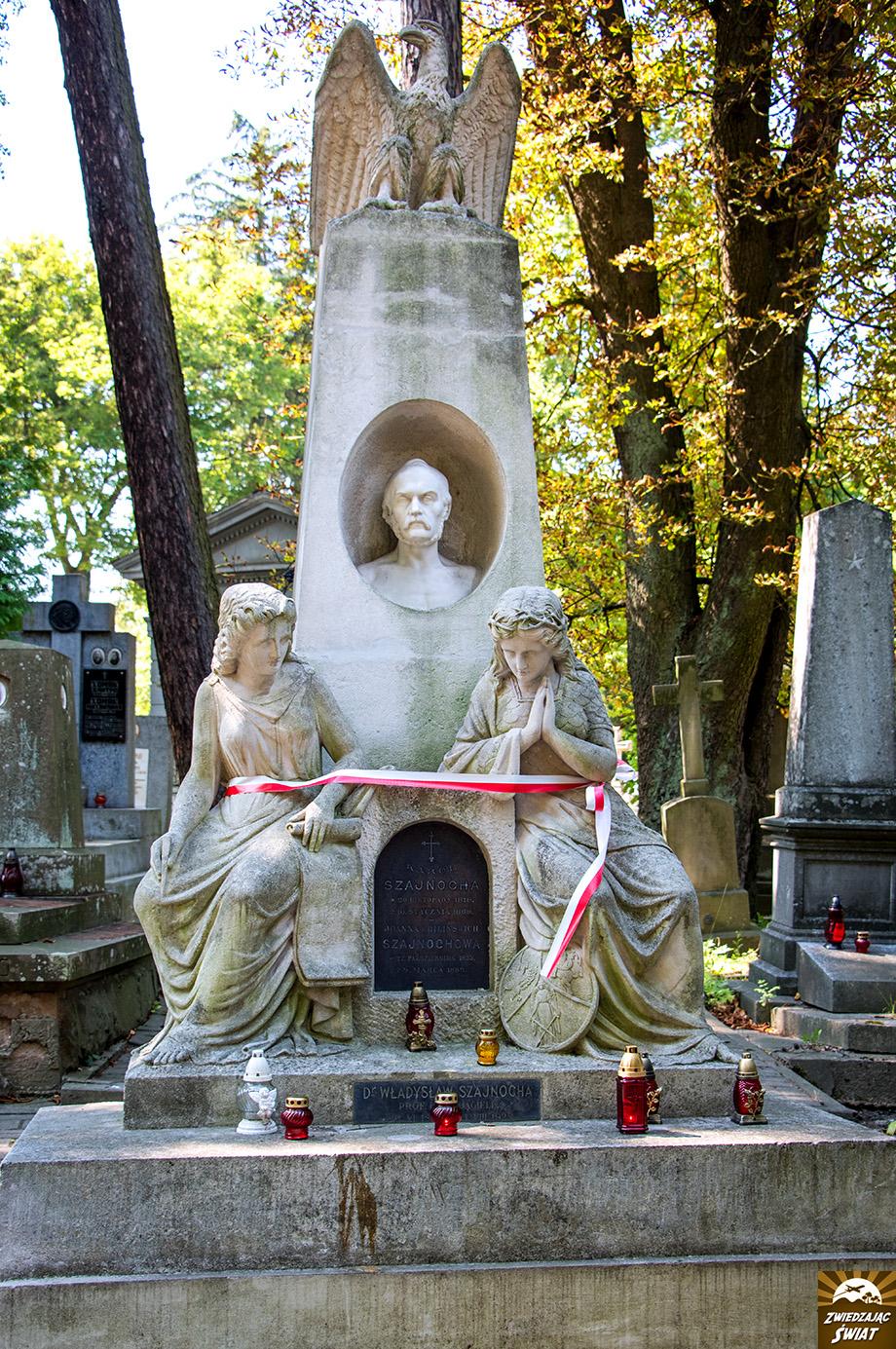 miejsce pochówku Karola Szajnochy, XIX-wiecznego historyka i publicysty