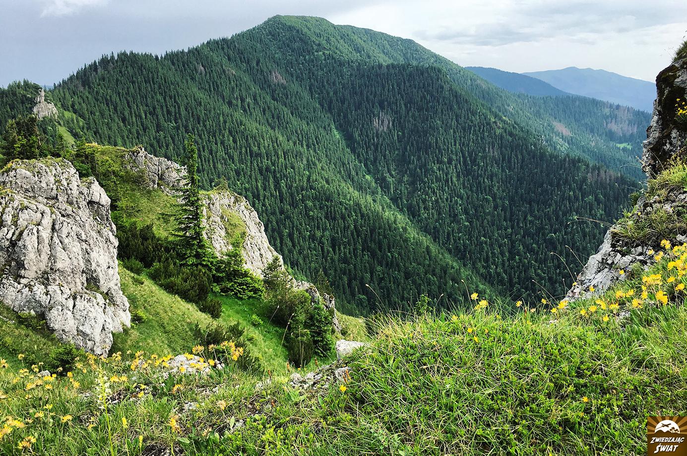 Tatry Niżne, szlak na Salatyn